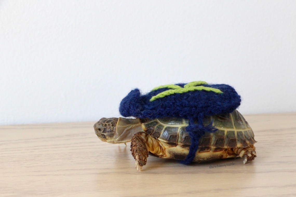 Mom, are you sure my super-tort cape didn't shrink?!