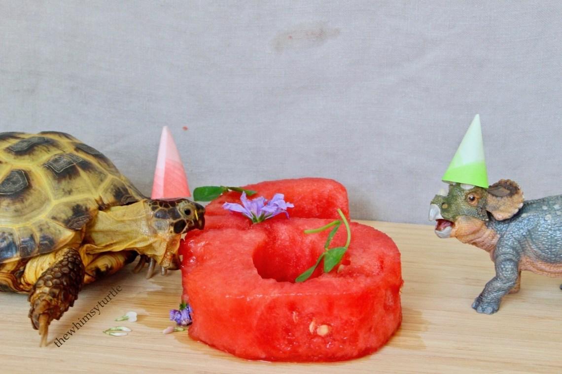 INTO MY BELLY, BIRTHDAY CAKE!