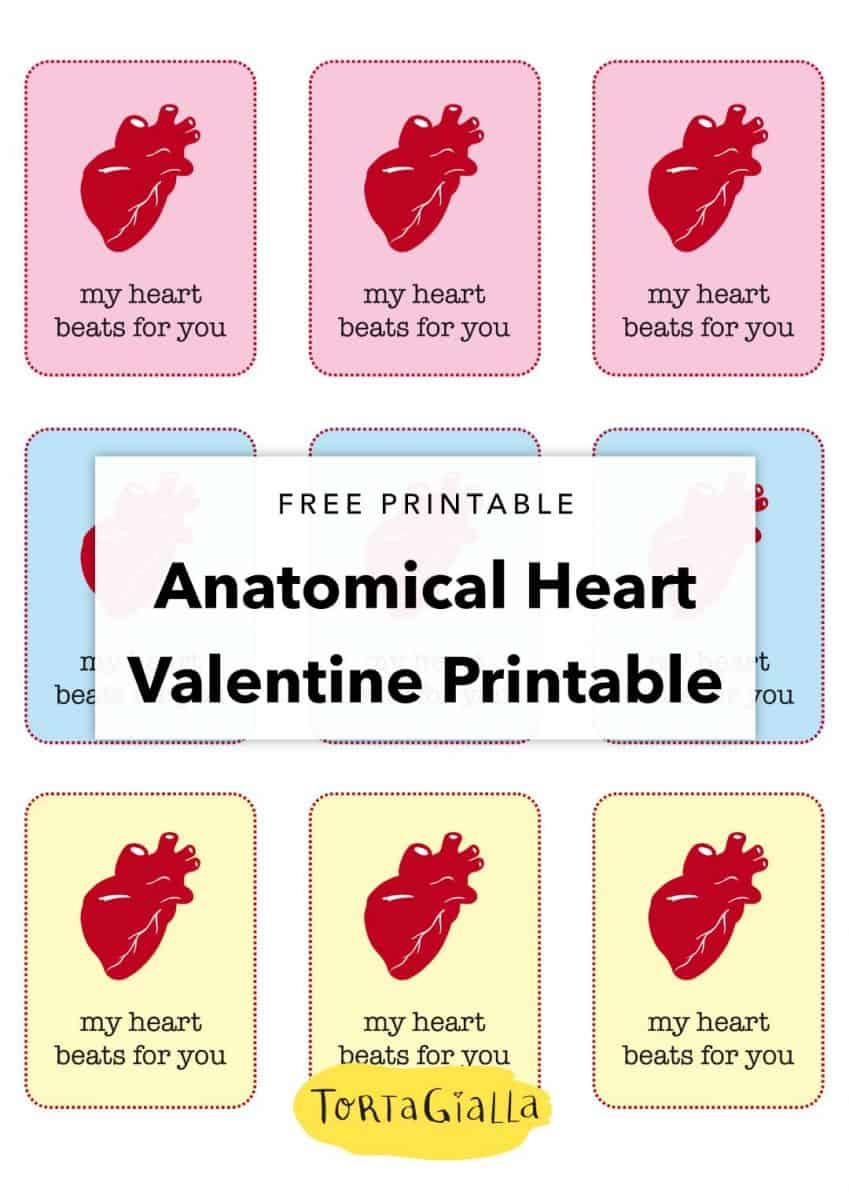 free printable Anatomical heart valentine