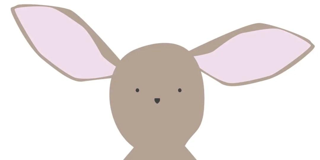 dust-bunny-illustration