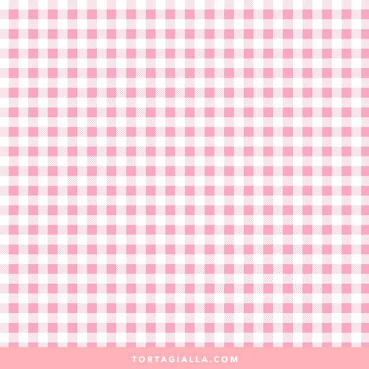 Spring Gingham Paper in Pink on tortagialla.com
