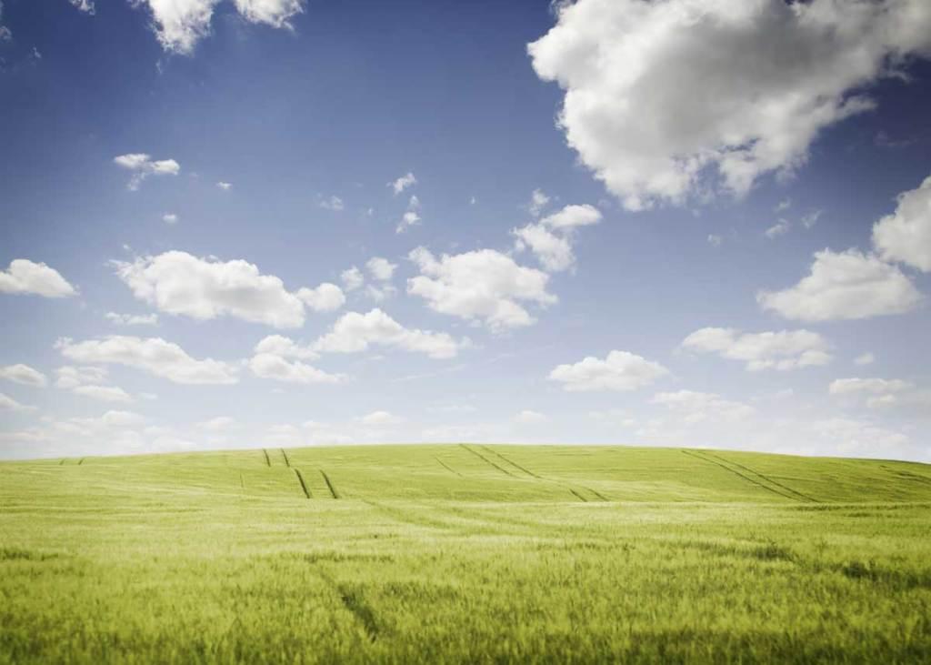 Cloud computing: heaven-sent or hazardous?