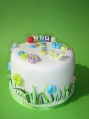 Simple Spring Cake for Paul´s 1st Birthday