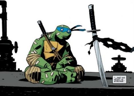 idw-tmnt-16-9-leonardo-tortues-ninja-turtles-tmnt