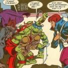 TMNT Adventures #22 Archie Comics 9 Shredder April O'Neil Raphael Leonardo Splinter Tortues Ninja Turtles TMNT