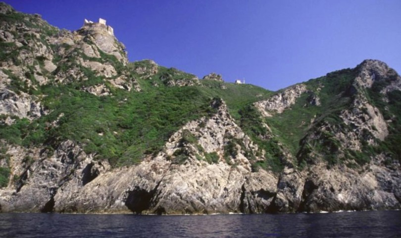 Isola della Gorgona