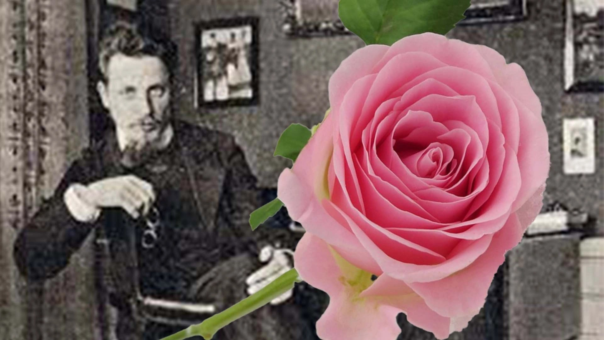 "LIBRI - Rainer Maria Rilke ""Le rose"""