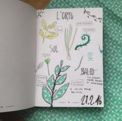 mygreenbook_tostoini_17