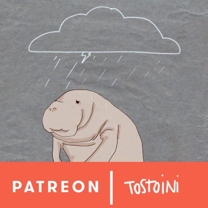 tostoini patreon early access