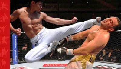 Taekowndo v kung fu