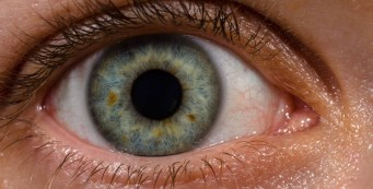 How to Know If Your Eyes Are Healthy: 8 Sings You're Okay