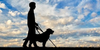 blind man being led by a guide dog