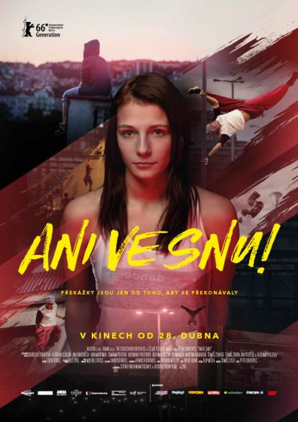 Ani-ve-snu-poster
