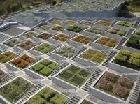 Memorial garden built on site of tragedy in Japan