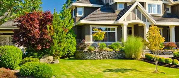 lawn care houston landscaping