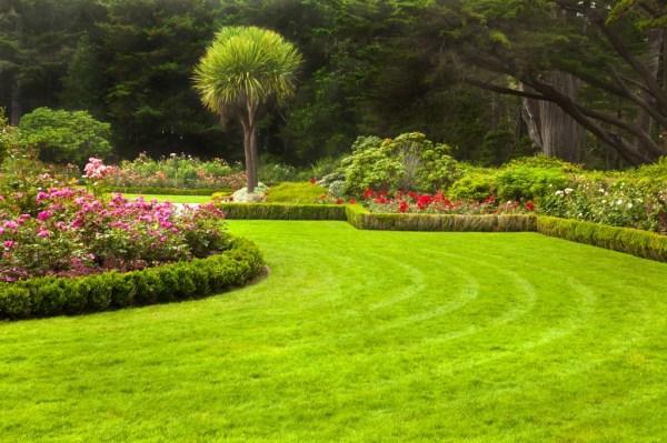 houston lawn care & landscape design