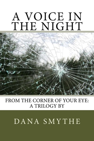 Review:  A Voice In The Night by Dana Smythe