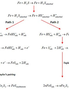 Figure proposed mechanism of   corrosion on fe also hydrogen sulfide total materia article rh totalmateria