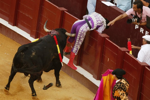 Spanish Bull Fighter Pedro Muriel Gored Where The Sun Don