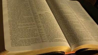 Photo of Biblia: Pâinea sufletului