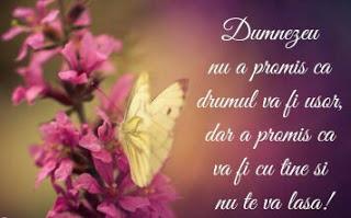 Photo of Promisiune