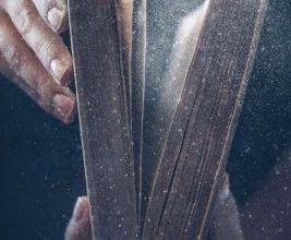 Photo of Tu de ce citești Biblia?