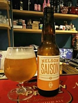 23 Brewing Nelson Saison