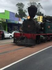 Bay of Islands Steam Train