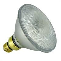 Track lighting SYLVANIA 16735 Par 38 CAPSYLITE 50 watt ...