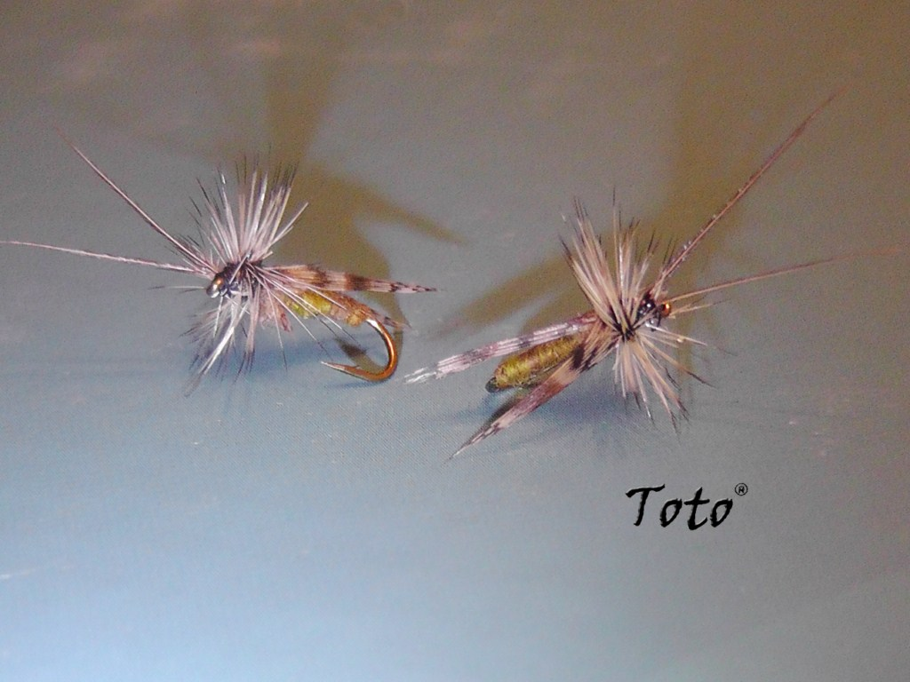 Caddis UV