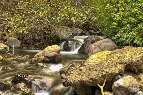 Piscicultura Río Blanco - El río Blanco