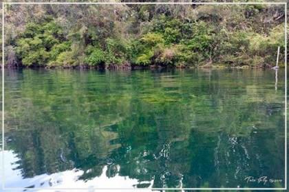 Apertura Lago Rupanco 2014-2015-13
