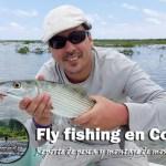 Fly fishing en Cozumel, reporte de pesca y montaje de mosca…