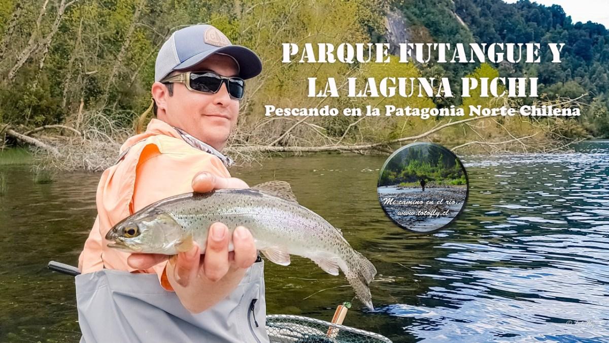 Parque Futangue y la Laguna Pichi, pescando en la Patagonia Norte Chilena