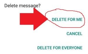 Panduan Cara Menghapus Pesan WhatsApp yang Sudah Terkirim