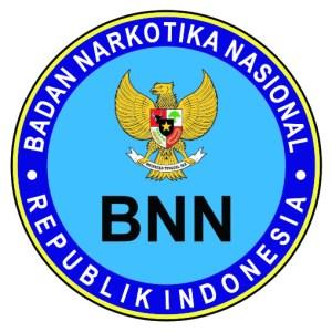 Daftar nama Peserta Yang Lulus SKD Hasil Tes CAT CPNS BNN 2018 Badan Narkotika Nasional.