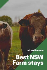 Best NSW Farm Stays