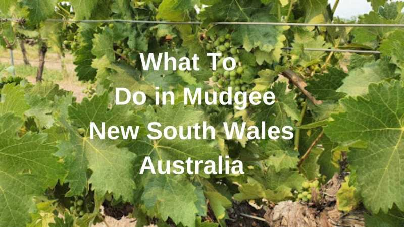 What to do in Mudgee