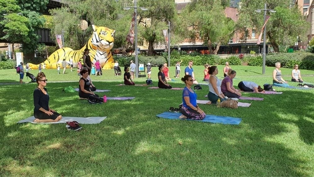 Yoga in the Park on weekends in the Rocks