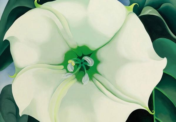 Jimson Weed/White Flower No. 1, vendido por mais de US$ 44,4 milhões em 2014