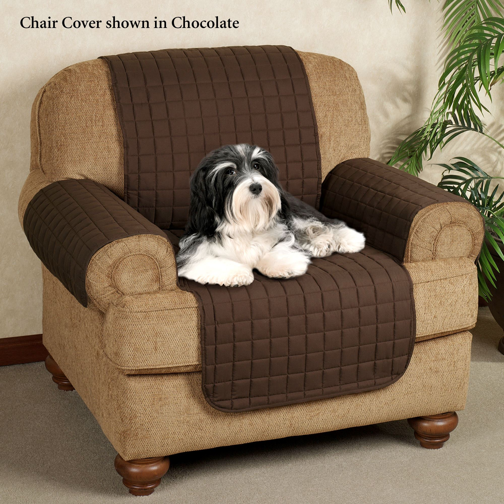 chairs for dogs upholstery sofa cover pet deluxe throw thesofa