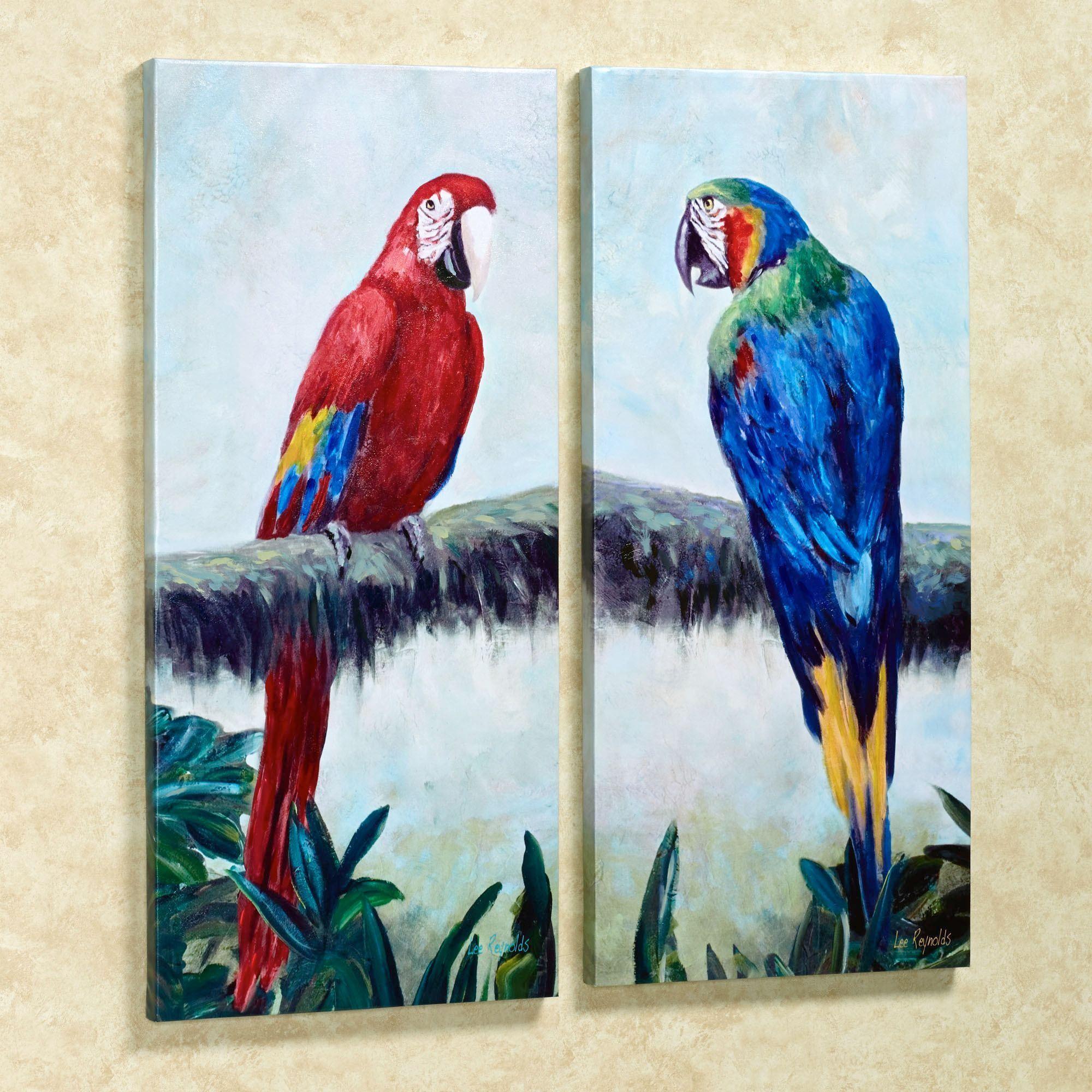 rainforest jewels macaw parrot