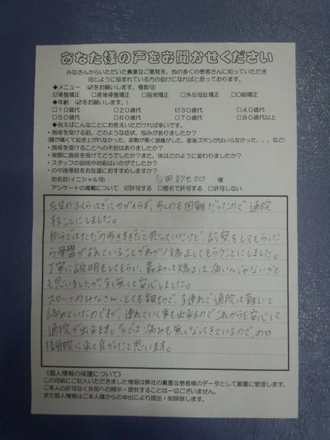 FJ310004