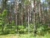 lituanie-023