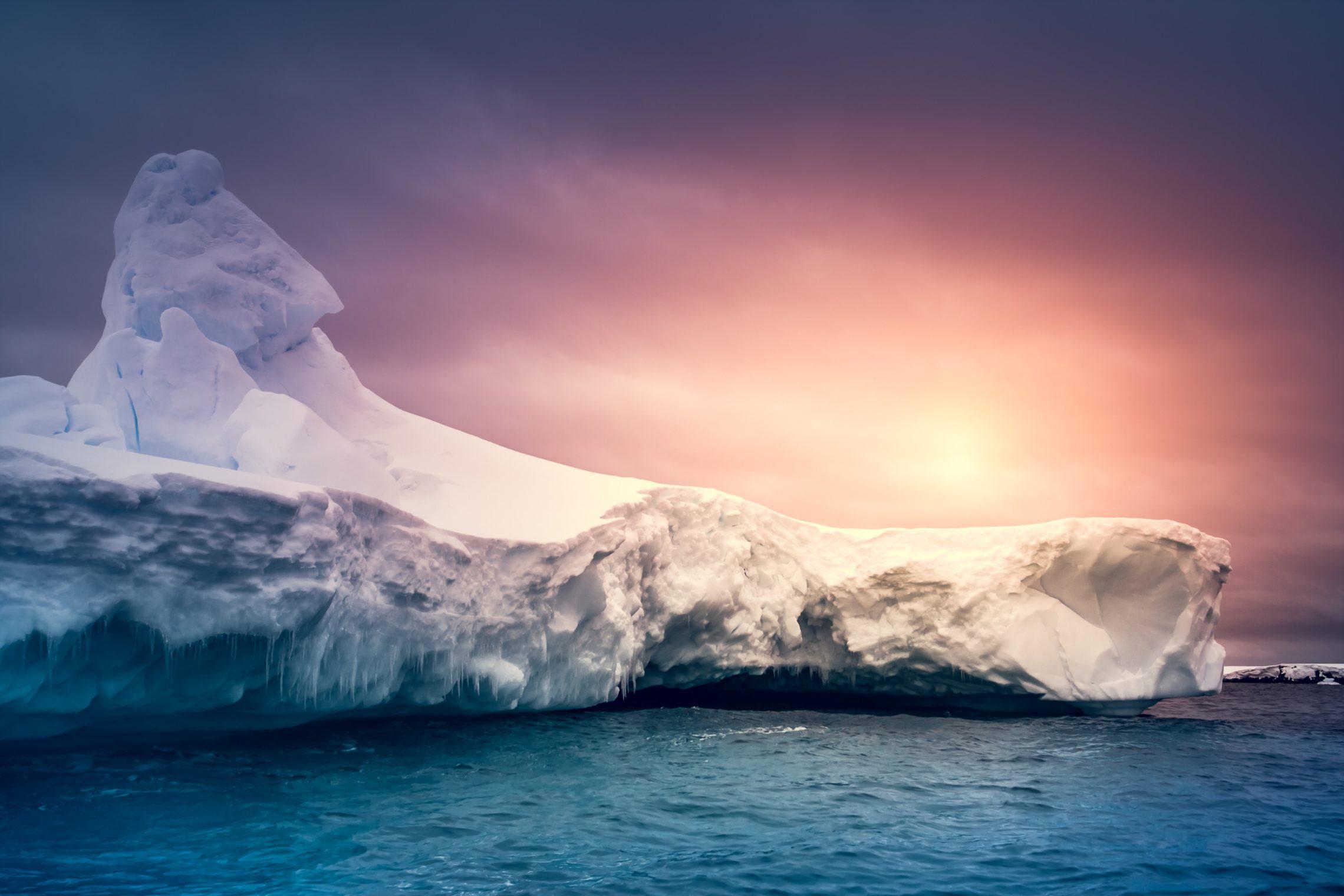 Antarctic Expedition alla scoperta del 7 continente  Tour 2000 America Latina