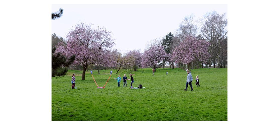 Parc De L Yser Parcs Et Jardins Nature En Ville Mes Loisirs Tourcoing