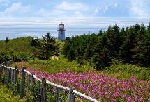 Les 10 Plats Incontournables De L Est Du Canada