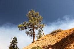 2018-09-12 - Bryce Canyon-12