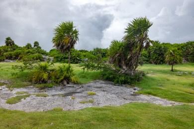 2018-10-07 - Tulum - Site Maya-33