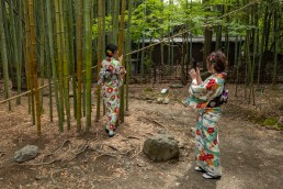 2019-05-28 - Arashiyama-10
